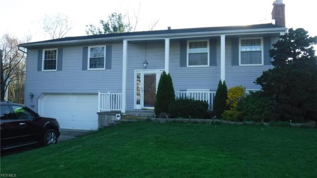 17162 Park Lane Dr, Strongsville, OH 44136 (MLS #4089150) :: RE/MAX Trends Realty