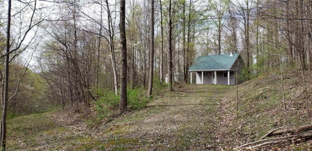 88200 Tr 215, Bowerston, OH 44695 (MLS #4090059) :: RE/MAX Valley Real Estate