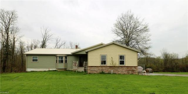 564 Co Rd 800, Polk, OH 44866 (MLS #4090345) :: RE/MAX Trends Realty