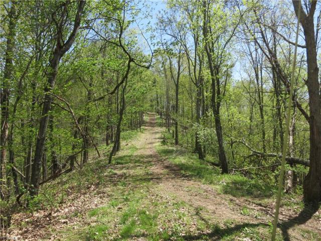 Little Kanawha Parkway, Elizabeth, WV 26143 (MLS #4090630) :: RE/MAX Valley Real Estate