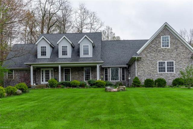 6209 Painesville Ravenna Rd, Concord, OH 44077 (MLS #4091244) :: RE/MAX Trends Realty