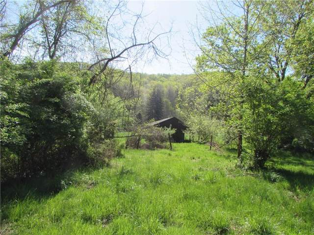 Mayberry Rd, Palestine, WV 26160 (MLS #4091575) :: RE/MAX Valley Real Estate