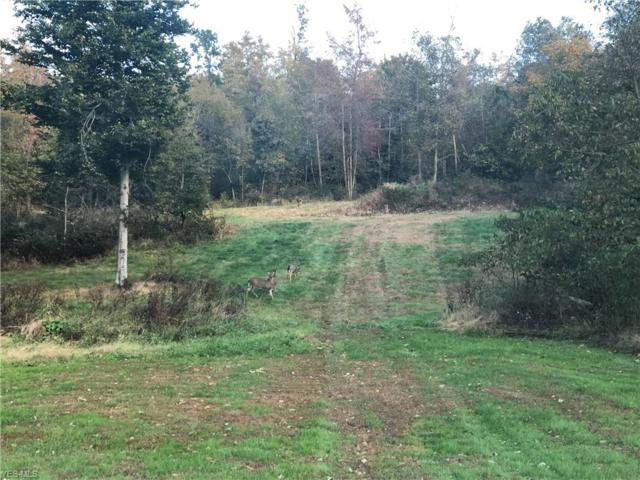N College St, Newcomerstown, OH 43832 (MLS #4091588) :: RE/MAX Valley Real Estate