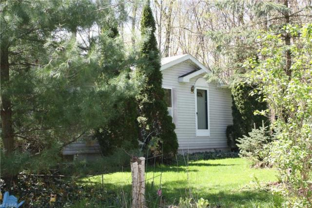 219 Township Road 1150, Polk, OH 44866 (MLS #4091955) :: RE/MAX Trends Realty