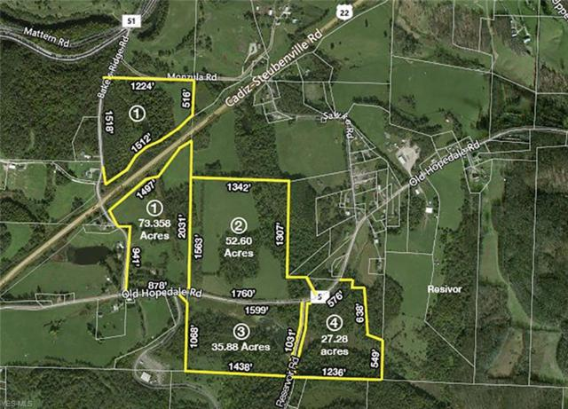 Old State Rd 22, Cadiz, OH 43907 (MLS #4092093) :: RE/MAX Trends Realty