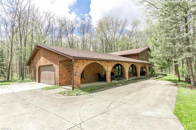 12228 Caves Rd, Chesterland, OH 44026 (MLS #4092548) :: RE/MAX Trends Realty