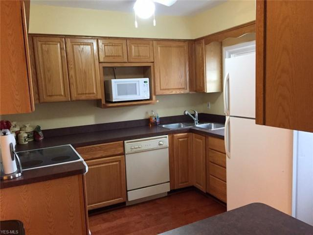 8 Meadowlawn Drive #4, Mentor, OH 44060 (MLS #4092821) :: RE/MAX Edge Realty