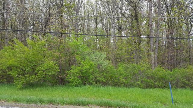 River Road Parcel 14, Perry, OH 44081 (MLS #4093010) :: The Crockett Team, Howard Hanna