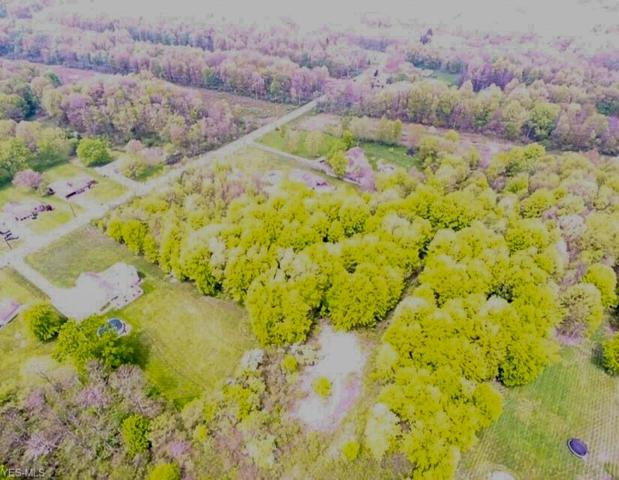 Ohltown Mcdonald Rd, Weathersfield, OH 44440 (MLS #4093415) :: RE/MAX Trends Realty