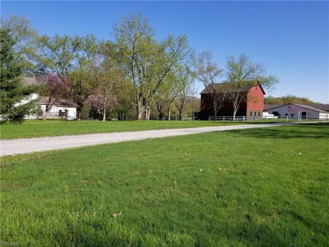 10489 Pekin Road, Newbury, OH 44065 (MLS #4093446) :: The Crockett Team, Howard Hanna