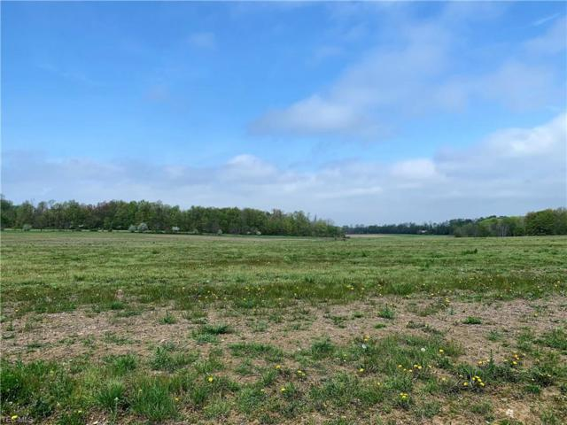 S/L 2E Beach Rd, Wadsworth, OH 44281 (MLS #4093724) :: RE/MAX Edge Realty