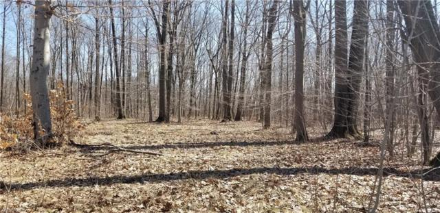1988 Morning Star Dr, Roaming Shores, OH 44084 (MLS #4094051) :: RE/MAX Valley Real Estate