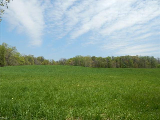687 County Road 620, Ashland, OH 44805 (MLS #4094407) :: RE/MAX Trends Realty