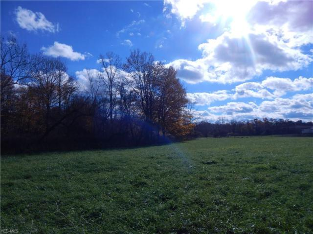 687 County Road 620, Ashland, OH 44805 (MLS #4094409) :: RE/MAX Trends Realty