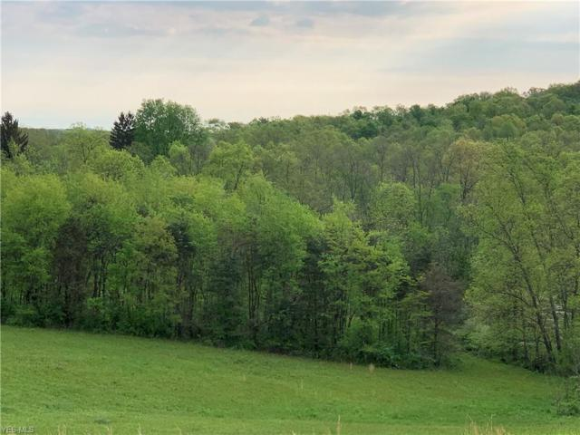 Tr 26, Coshocton, OH 43812 (MLS #4094416) :: RE/MAX Valley Real Estate