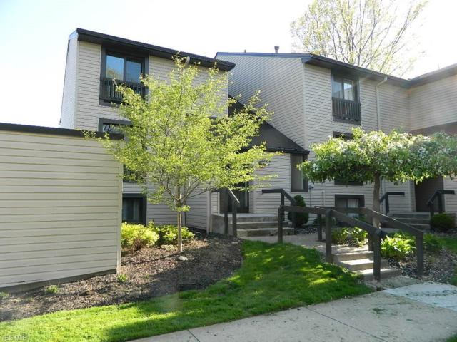 6320 Greenwood #103, Northfield, OH 44067 (MLS #4094532) :: RE/MAX Trends Realty
