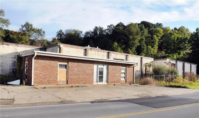 8667 Georgetown Rd, Cambridge, OH 43725 (MLS #4095141) :: RE/MAX Trends Realty