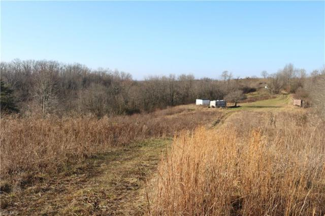 Rado Ridge Rd, Caldwell, OH 43724 (MLS #4095157) :: RE/MAX Trends Realty
