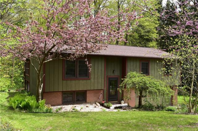 14741 Evergreen Drive, Burton, OH 44021 (MLS #4095189) :: The Crockett Team, Howard Hanna