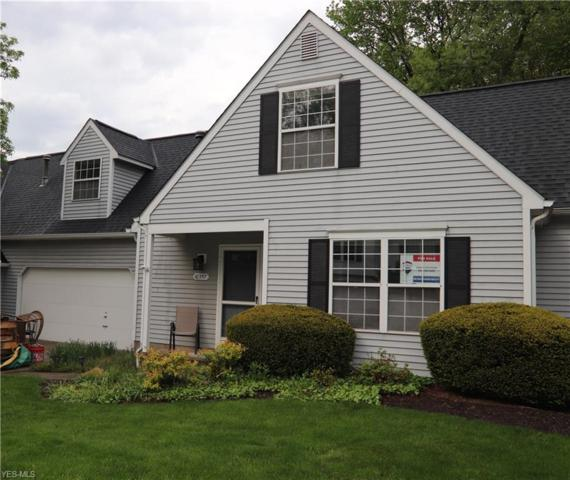 10357 White Ash Trl, Twinsburg, OH 44087 (MLS #4095276) :: RE/MAX Pathway