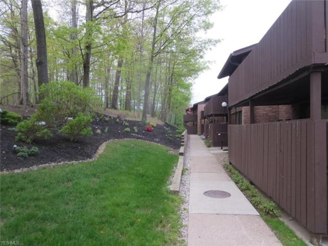 6885 Carriage Hill Dr E-69, Brecksville, OH 44141 (MLS #4095490) :: RE/MAX Trends Realty