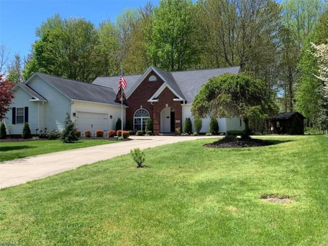2032 Haines Rd, Madison, OH 44057 (MLS #4095624) :: RE/MAX Valley Real Estate