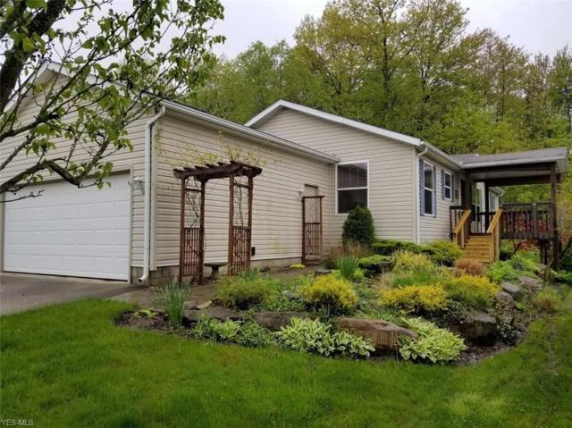 9009 Sandpiper, Streetsboro, OH 44241 (MLS #4096039) :: RE/MAX Valley Real Estate