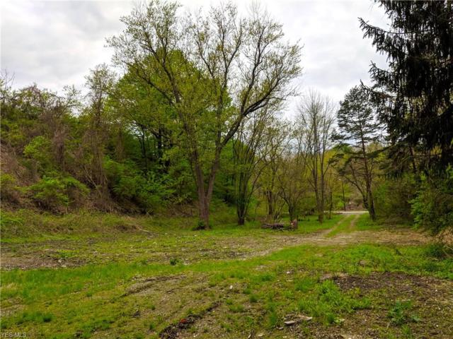 14 Mantle Rd, Painesville Township, OH 44077 (MLS #4096282) :: RE/MAX Trends Realty