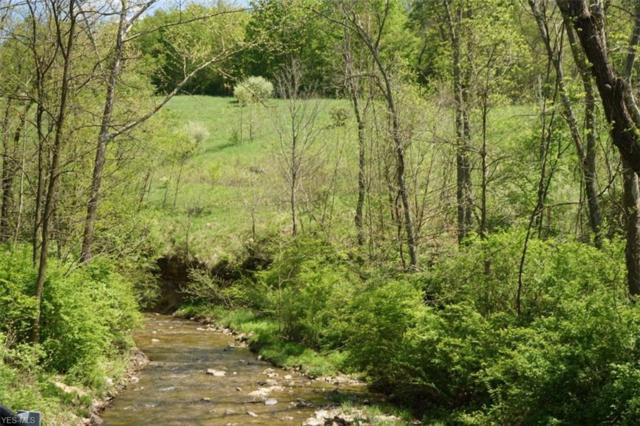 51345 Little Mcmahon Creek Rd, St. Clairsville, OH 43950 (MLS #4096361) :: RE/MAX Trends Realty