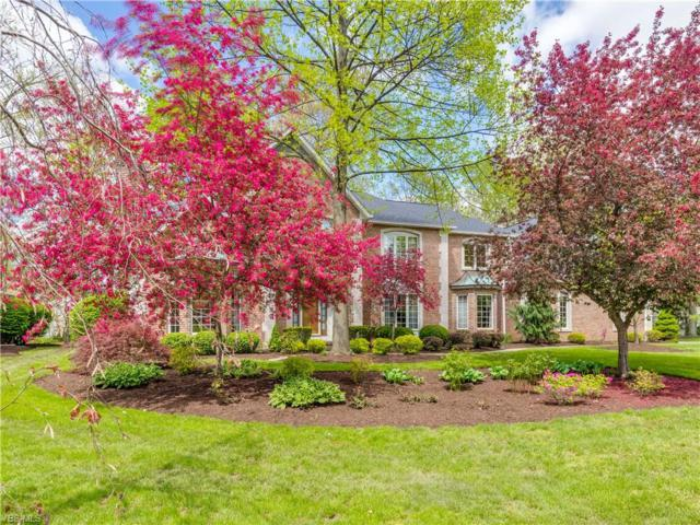 2427 Radford Street NW, North Canton, OH 44720 (MLS #4096415) :: RE/MAX Above Expectations