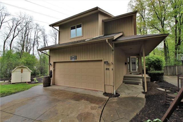 891 Delaware Ave, Akron, OH 44303 (MLS #4096472) :: RE/MAX Edge Realty