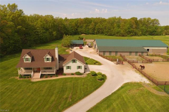 5322 Boneta Road, Medina, OH 44256 (MLS #4096557) :: The Crockett Team, Howard Hanna