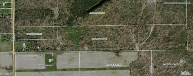 1968 Porter Rd, Atwater, OH 44201 (MLS #4097252) :: RE/MAX Trends Realty