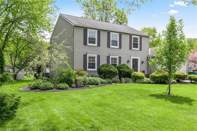 8001 Aileen Dr, Mentor, OH 44060 (MLS #4097926) :: RE/MAX Edge Realty