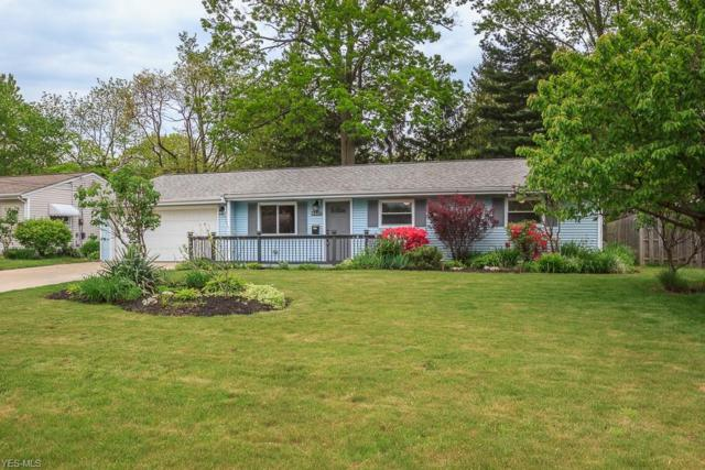 6437 Antoinette Dr, Mentor, OH 44060 (MLS #4098003) :: Tammy Grogan and Associates at Cutler Real Estate