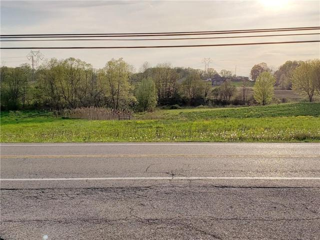 State Route 44, Ravenna, OH 44266 (MLS #4098635) :: RE/MAX Valley Real Estate