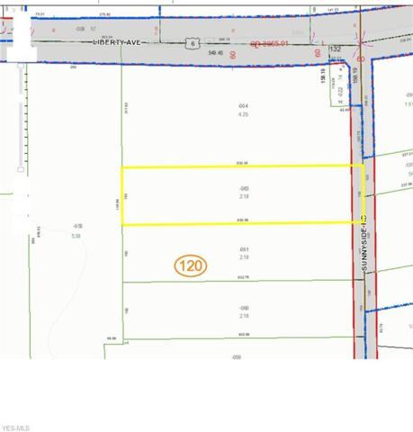 550 Sunnyside Road, Vermilion, OH 44089 (MLS #4098774) :: The Crockett Team, Howard Hanna