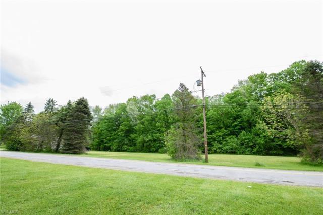 Infirmary Road, Mantua, OH 44255 (MLS #4098965) :: The Crockett Team, Howard Hanna