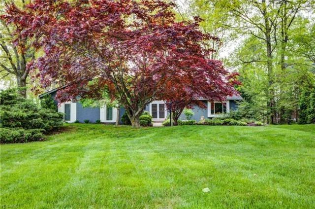 5031 Oakhill Blvd, Lorain, OH 44053 (MLS #4099008) :: RE/MAX Trends Realty