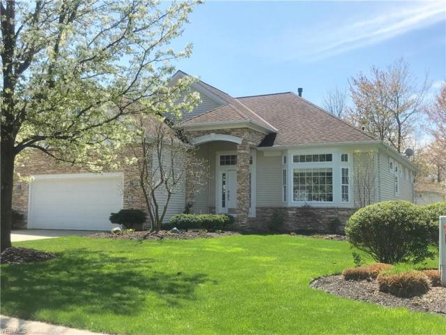 11384 S Forest Dr, Painesville, OH 44077 (MLS #4099067) :: RE/MAX Edge Realty