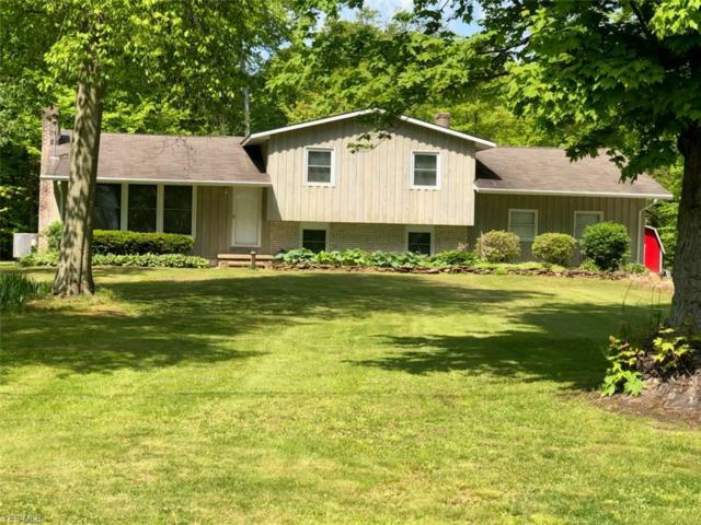 10757 Clapsaddle Ave NE, Alliance, OH 44601 (MLS #4099079) :: RE/MAX Trends Realty