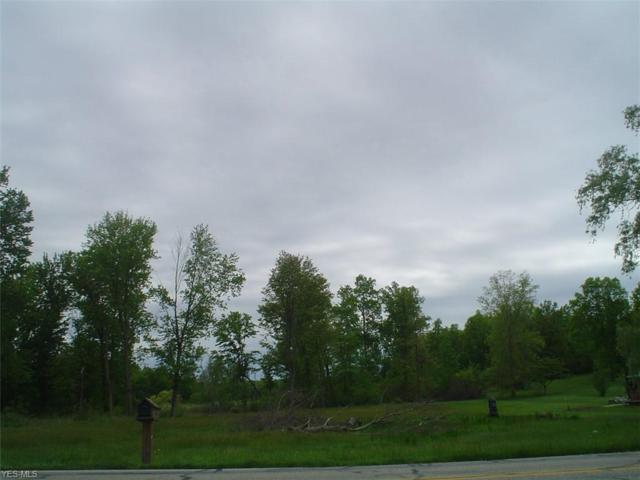 Hayes Rd, Ravenna, OH 44266 (MLS #4099113) :: RE/MAX Trends Realty