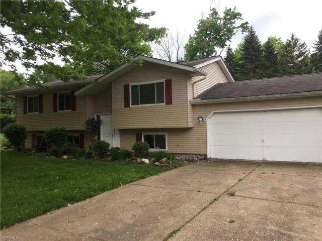 6184 Althea Dr, Concord, OH 44077 (MLS #4099162) :: RE/MAX Edge Realty