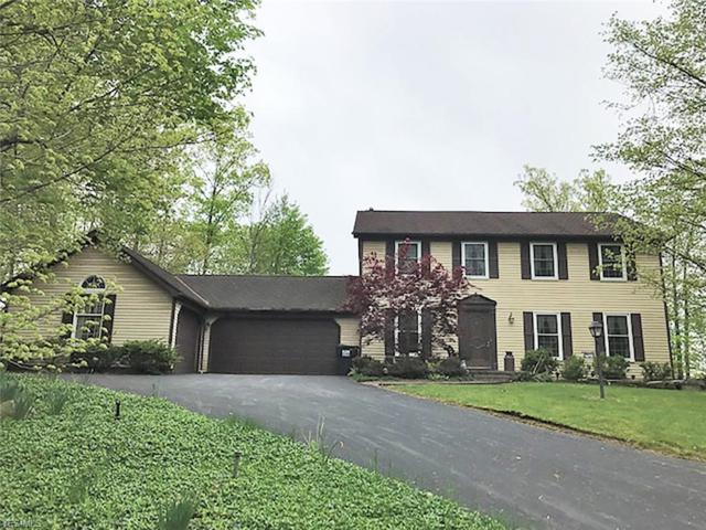 6863 Kirk Rd, Canfield, OH 44406 (MLS #4099283) :: RE/MAX Trends Realty