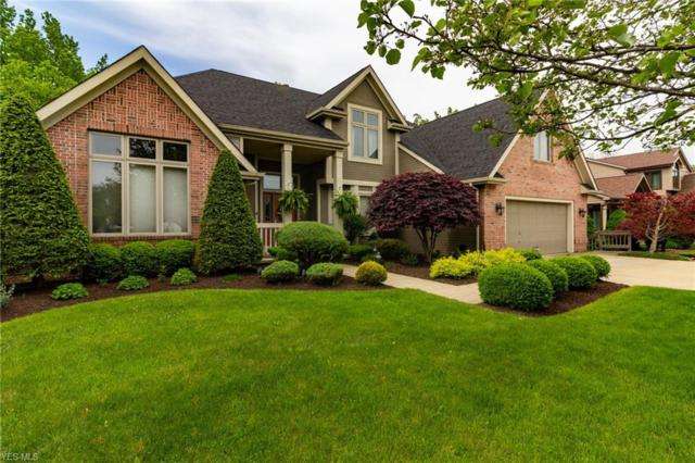 10235 Versailles, Strongsville, OH 44136 (MLS #4099899) :: RE/MAX Valley Real Estate