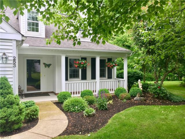 253 Manor Brook Drive, Chagrin Falls, OH 44022 (MLS #4100583) :: RE/MAX Edge Realty