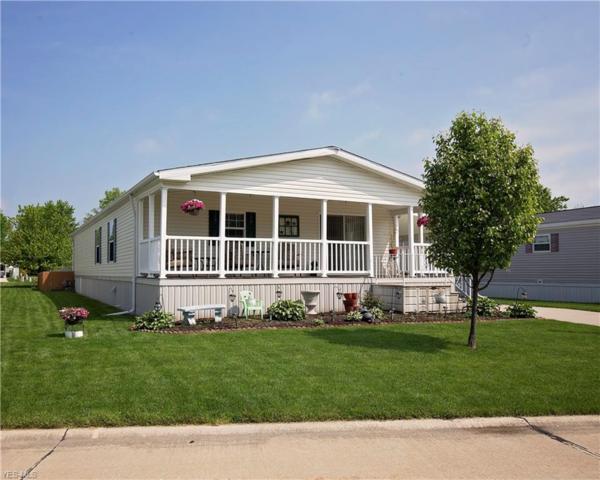 209 Pin Oak Circle, Elyria, OH 44035 (MLS #4100764) :: The Crockett Team, Howard Hanna