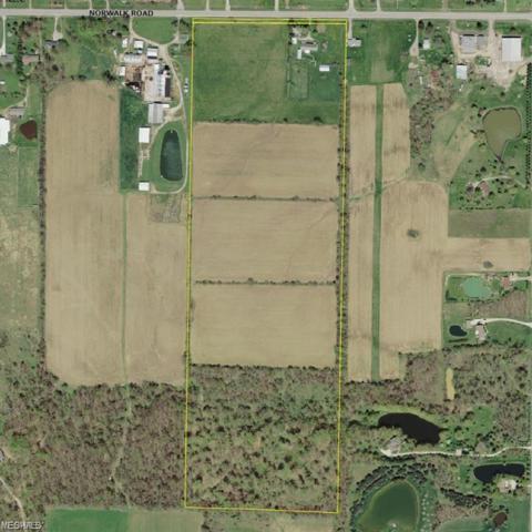 Stone Road, Litchfield, OH 44253 (MLS #4101024) :: The Crockett Team, Howard Hanna