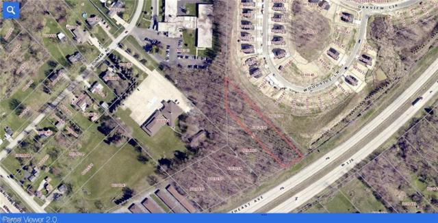 Dunbar Road, Tallmadge, OH 44278 (MLS #4101397) :: Keller Williams Chervenic Realty