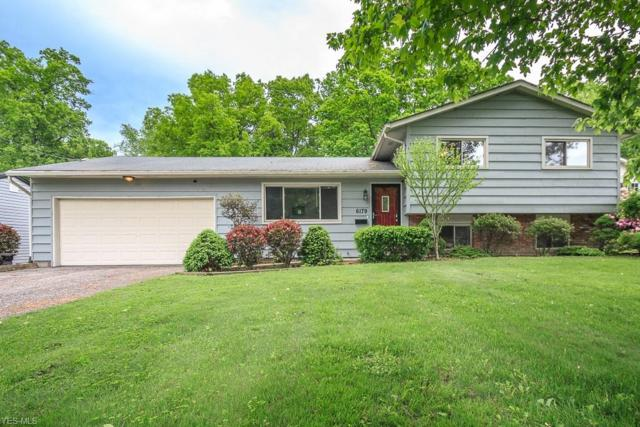 6179 Reynolds Road, Mentor, OH 44060 (MLS #4101411) :: RE/MAX Edge Realty